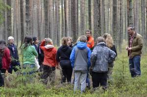 Instruktioner i trädfällning